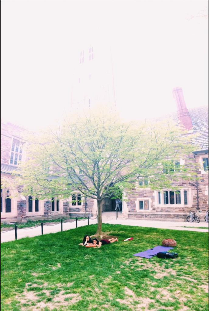 Springtime studying in Holder Courtyard! Photo courtesy of Dalma Foldesi '15.