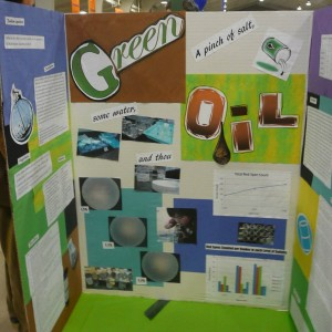 I didnt even know how to make a proper posterboard when I started conducting research.